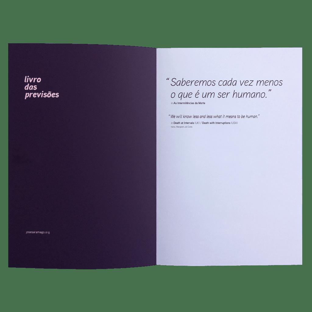 Os cadernos das epígrafes - livro das previsões